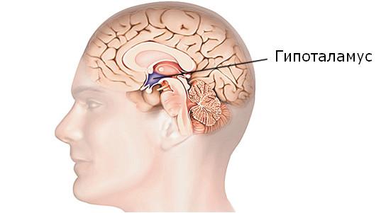 mozg-vozdeistvie