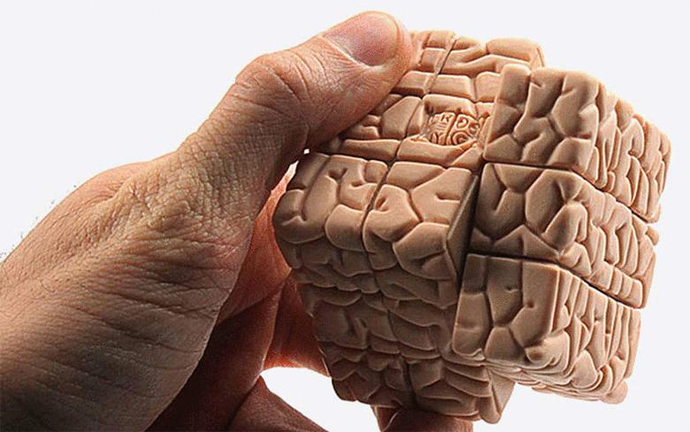 mozgi-pikamilon