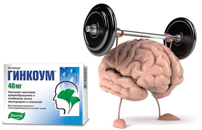 krovoobraschenie-mozga