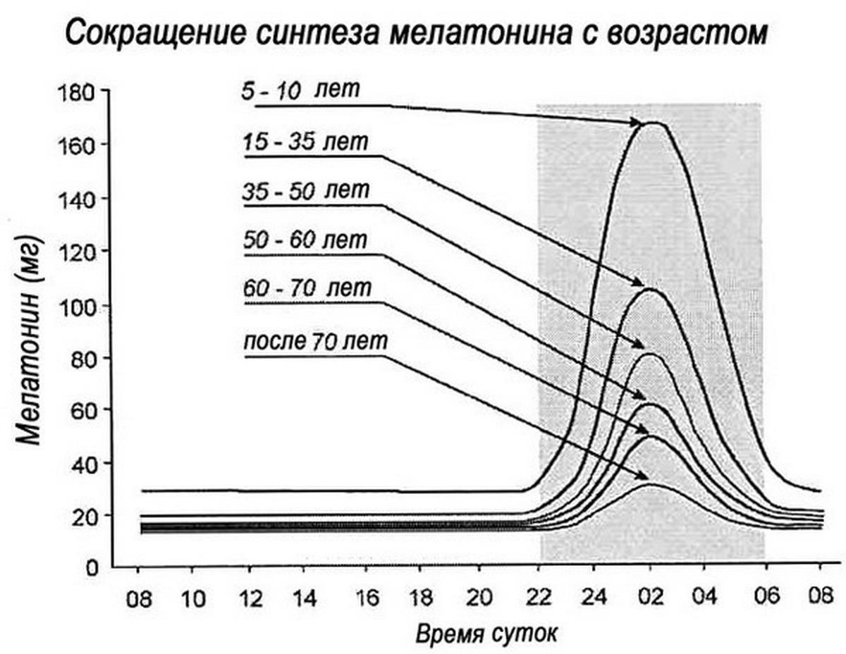 melatonin-sokracshaetsya
